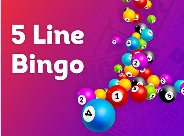 How to play 5-Line Bingo online?
